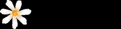Doriromera Fotografía